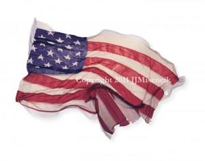 U.S. Flag #1 2011